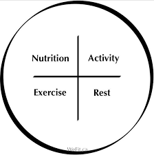exercise rest nutrition gary article